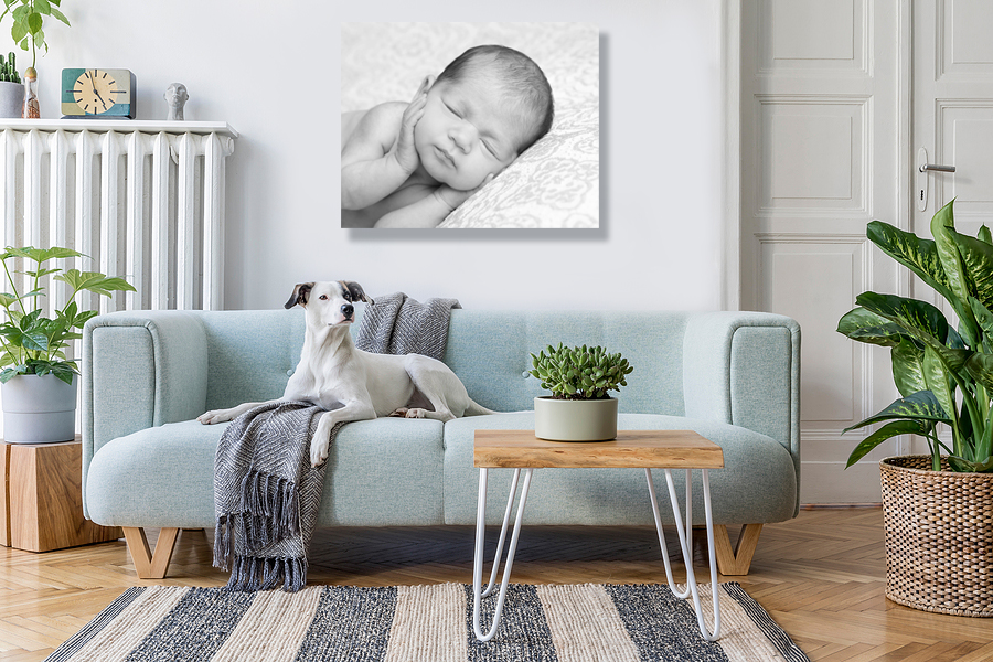 Stylish Living Room Interior with cute newborn canvas on wall