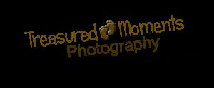 logo 6inch no background copy